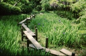 Tokyo1993-jardin10