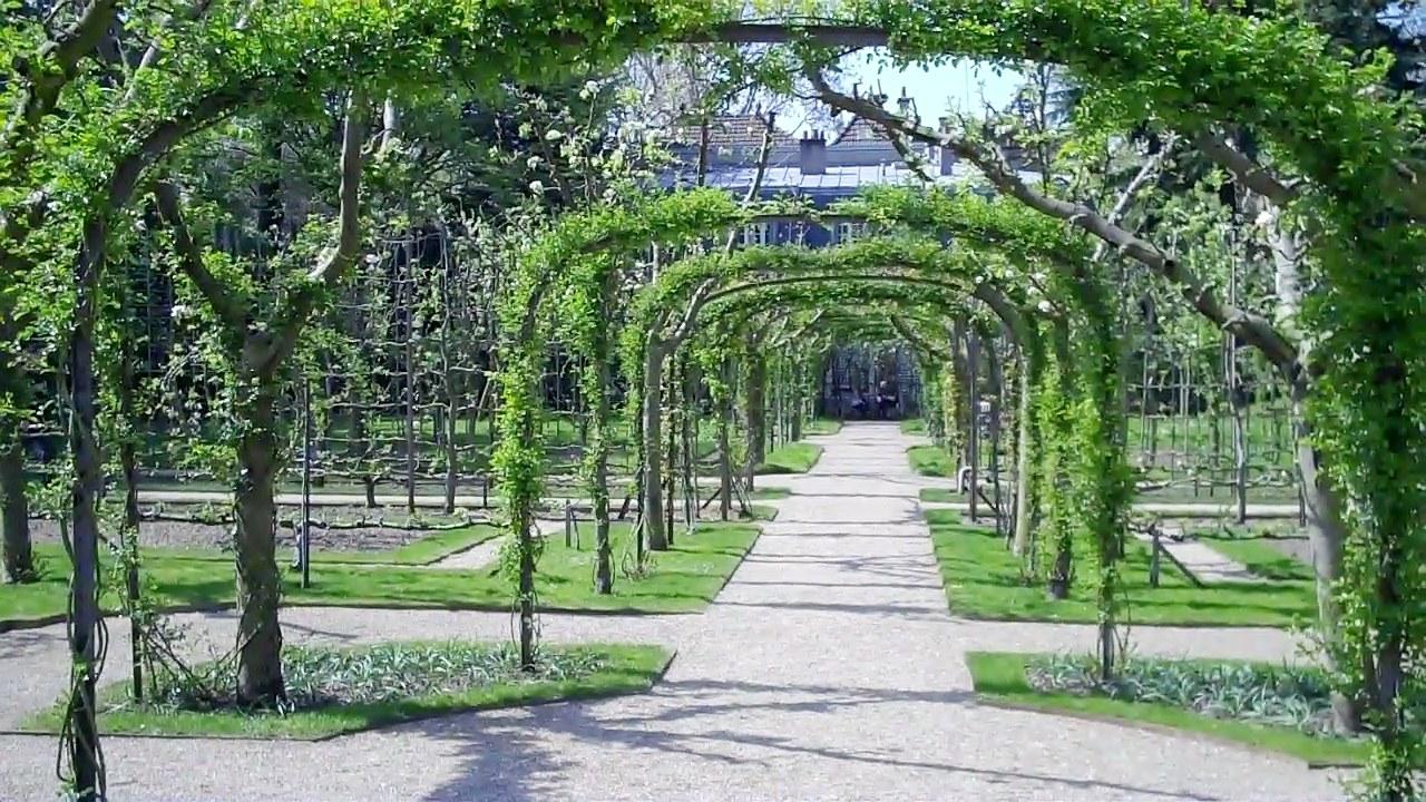 Boulogne le jardin albert kahn triton95 for Jardin de the