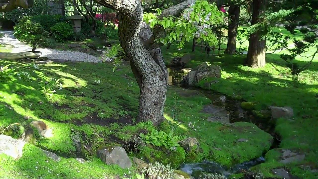 Boulogne le jardin albert kahn triton95 for Le jardin kahn